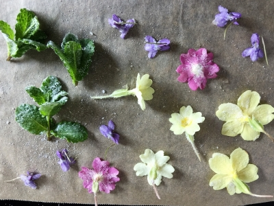 Crystallised flowers to decorate a Mother's Day cake